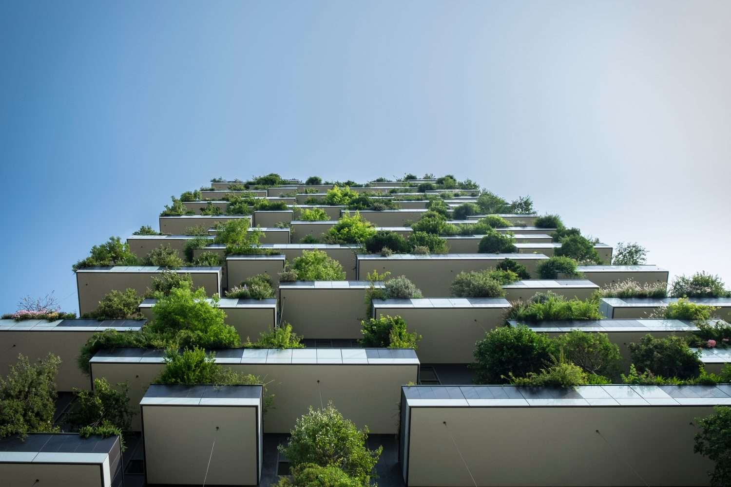 Efficient Sustainability Starts with Outsourcing Utility Management