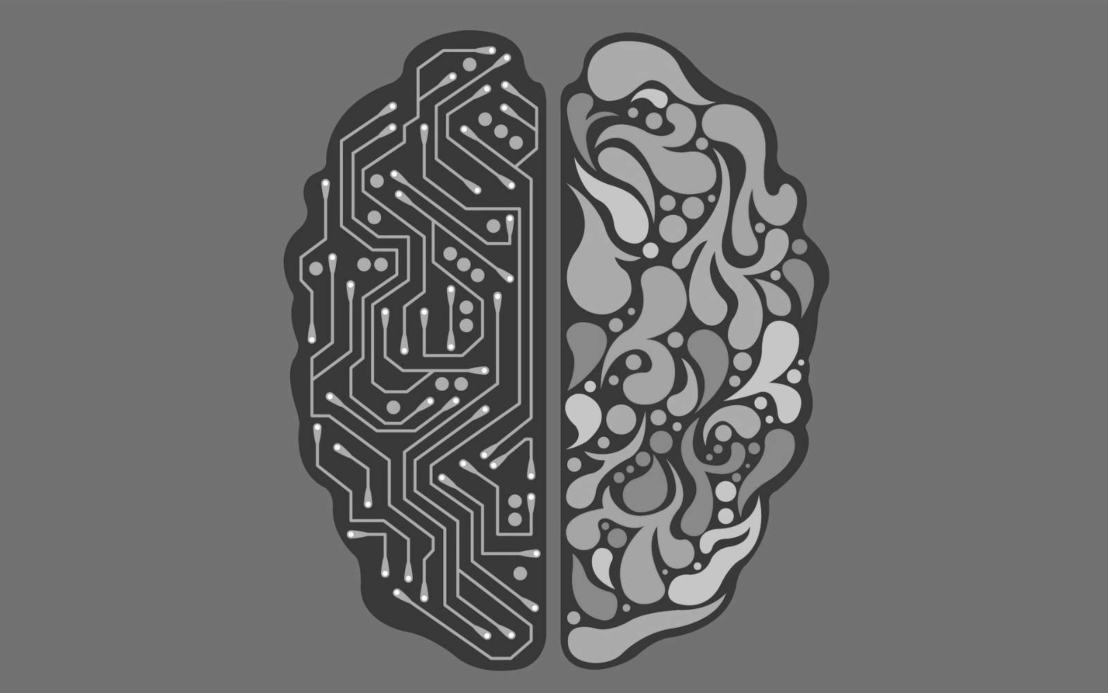Machine Learning Data Extraction