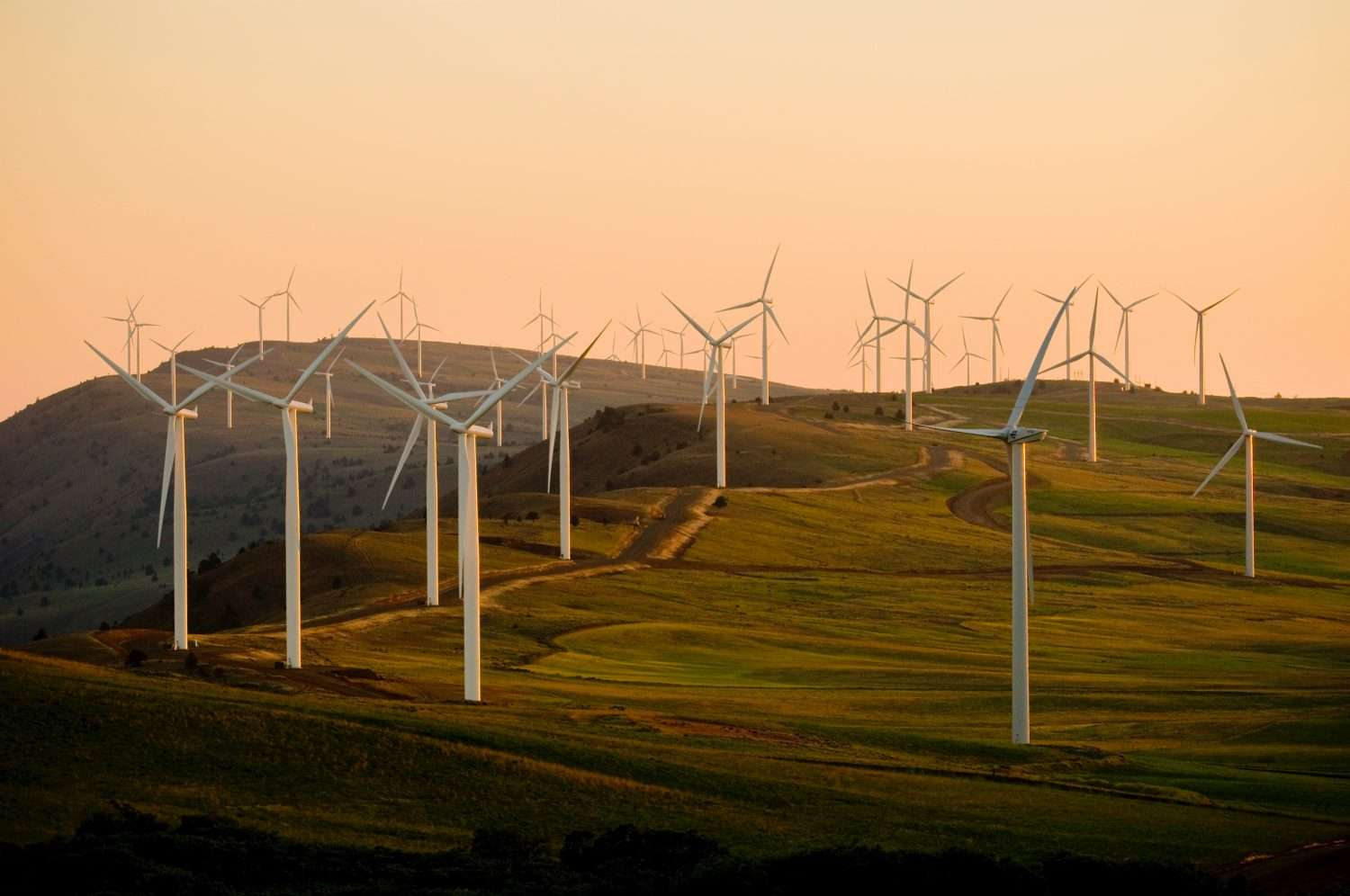 How to Streamline Utility Consumption and Sustainability Reporting