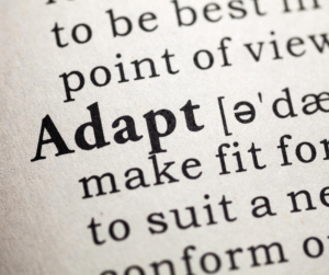 ARDEM builds adaptable solutions for finance outsourcing.