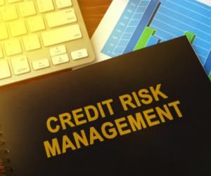 Most financial institutions will find themselves struggling with credit risk management this year.
